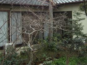 熊本県熊本市 ウッドデッキリフォーム 施工前